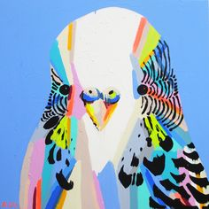 BUDGIES OWLS PARROTS - ANYA BROCK