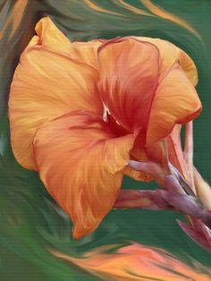 'Winsome' by Lisa S. Baker #flower #floral #iris #wallart #homedecor