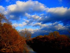Uros Petrovic - The River Begej, via Flickr.