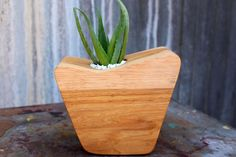 Modern Succulent Planter - Mid Century Inspired By Few Bits