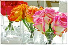 Personalized Glass Vase Wedding Centerpiece (Set of These will look pretty as reception table centerpieces Inexpensive Centerpieces, Flower Centerpieces, Table Centerpieces, Centerpiece Ideas, Short Centerpieces, Colorful Centerpieces, White Centerpiece, Elegant Centerpieces, Summer Wedding Centerpieces