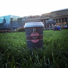 Blog - Coffee Fellows Stuttgart! Stuttgart Schlossplatz! #coffeefellows #stuttgart #coffetogo #coffee #latte #cappuccino