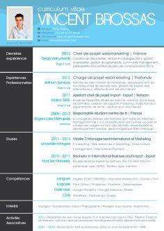Résultats Google Recherche d'images correspondant à http://www.vincent-brossas.com/wp-content/uploads/2013/08/cv-chef-de-projet-web-marketin...