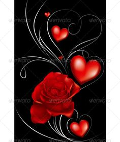 Buy Dark Red Roses and Heart by dracozlat on GraphicRiver. red rose and heart decorated with thin lines on a black background Red Wallpaper, Heart Wallpaper, Cellphone Wallpaper, Black Backgrounds, Wallpaper Backgrounds, Wallpapers, Image Bougie, Dark Red Roses, Hearts And Roses