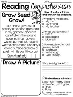 Reading Comprehension Worksheets For First Grade Students