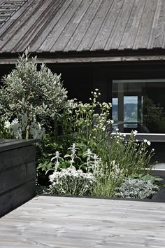 I´ve spent a lot of time on our terrace lately and I realized that´s been a while since I´ve updated you with photos from our outdoor area ( I´ve posted. Wedding Pergola, Diy Pergola, Pergola Kits, Landscape Design, Garden Design, Garden Storage Bench, Scandinavian Garden, Black Pergola, Shade House