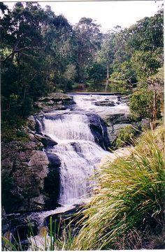 #realbeautyofwilsonspromontory #naturebeautyofwilsonspromontory http://www.promcoastholidaylodge.com.au