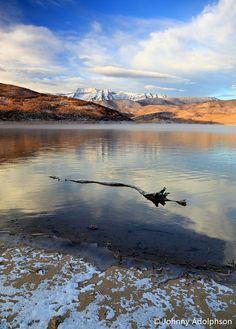 Morning at Deer Creek, Heber Valley, Utah Cool Photos, My Photos, Heber City, Utah Usa, Winter Photography, Beehive, View Image, Deer, Landscape