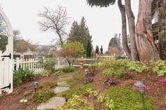 Ravenna 1905, great 5.4K yard. Front nice fence, path. photo #7. 5506 16th ave NE