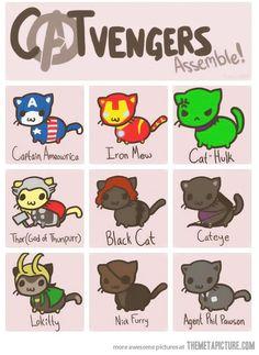 I love The Avengers!  http://themetapicture.com/media/funny-avengers-cats-cute.jpg
