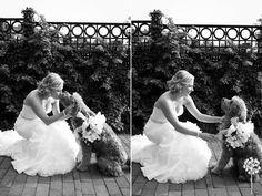 Lindsay + Ruby :: Phoenixville Foundry Wedding Photography :: Bride with dog :: Dog Ringbearer