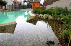 Como hacer una piscina natural.