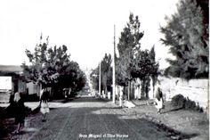 Calle de San Miguel el Alto Jalisco Mexico   14