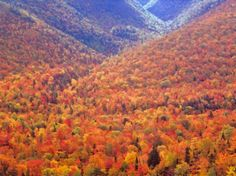 10 of the Best Places to See Fall Foliage in Canada: The Cabot Trail, Cape Breton Island, Nova Scotia
