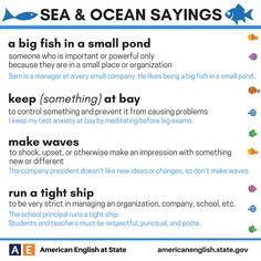 Sea & Ocean Sayings