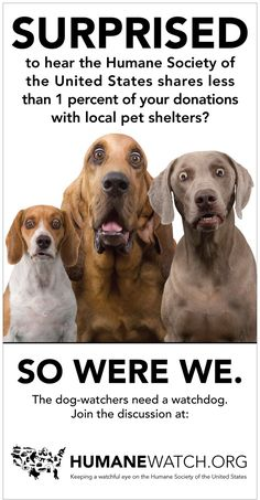 """Don't let the name """"Humane Society"""" fool you, the Humane Society of the United States does not own or operate a single animal shelter."""