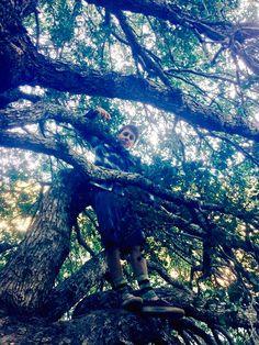 Jacob loves dat tree. Haha Jacob Bertrand, Karate Kid Cobra Kai, Best Tv Shows, City Photo, Haha, Ha Ha