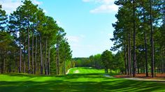 Rees Jones built Pinehurst No. 7 in 1986 on the site of a forgotten nine-hole employee course that was laid out by Donald Ross. Pinehurst Resort, Southern Pines, Aberdeen, Golf Courses, Spaces, World, Building, Buildings, The World