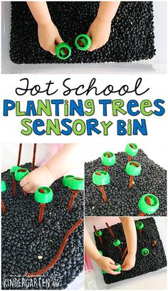 Tot School: Earth Day This planting trees sensory bin was fun for little hands to explore. Perfect for an Earth Day theme in tot school, preschool, or the kindergarten classroom. Earth Day Preschool Activities, Kindergarten Crafts, Preschool Lessons, Preschool Crafts, Kindergarten Classroom, Sensory Activities, November Preschool Themes, Baby Activites, Toddler Classroom
