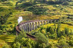 De somptueuses photos de trains dans la nature  2Tout2Rien