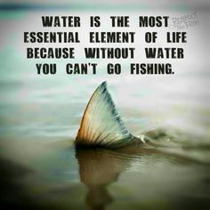 Funny fishing memes, inspirational fishing quotes and posts, fishing photos and videos, cool fish stories and much much more! Fishing Life, Gone Fishing, Best Fishing, Kayak Fishing, Fishing Boats, Fishing Stuff, Fishing 101, Fishing Pliers, Fishing Basics
