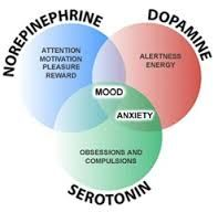 When brain stops producing dopamine and serotonin the person stars to feel depressed, there are ways to get rid of depression naturally without medical drugs, here is how Stress, Borderline Personality Disorder, Therapy Tools, Cognitive Behavioral Therapy, Bipolar Disorder, Disorders, Mental Health, Gut Health, Public Health