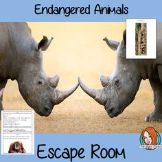 Endangered Animals Escape Room Game This is a fun game that is perfect for teaching children about the Endangered Animals. This game focuses on students finding out facts and information and using these to solve puzzles. This helps them to learn about Endangered Animals