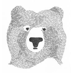 Affiche Black Bear