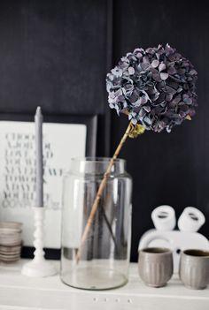 jar + single stem flower + typography print