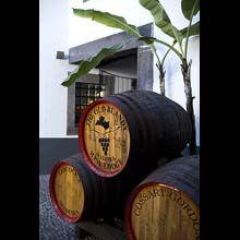 wine barrels in courtyard - Google Search