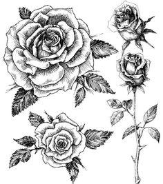 Ensemble de tatouage temporaire rose