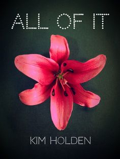 Book Blitz! All Of It by Kim Holden - Deliciously Wicked Books