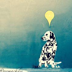 "Love this , ""If it takes forever I will wait for you"" !! 💛 #streetart #graffiti #urbanart #art #dog #waiting #mansbestfriend #tv_australia #tv_australia #tv_streetart_ #streetart_daily #streetart_official #super_graffiti_channel #super_chanel_hub #be_one_urbanart #artmarketer #planetstreet #werewolf_dax #bigcityfreaks #tv_community #street_art #street_shots #wallart #wallfilth #sydney #graff #ihaveathingforwalls #mural #tv_community"