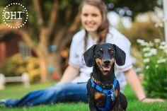 Posing with dog dachshund Senior Year Pictures, College Senior Pictures, Senior Photos Girls, Grad Pics, Graduation Pictures, Dog Pictures, Senior Pics, Senior 2018, Senior Photography