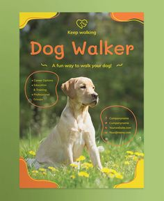 Dog Walker Poster Template AI, EPS, INDD, PSD and MS Word - Both US Medium and EU A2 poster formats Professional Poster, Professional Group, Poster Templates, Education And Training, Dog Walking, Your Dog, Medium, Words, Animals