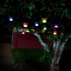 lampjesboom