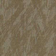 126 Best Mohawk Carpet Images Mohawk Carpet Mohawk Rugs