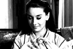 The Best Audrey Hepburn GIFs Collection to Make Your Heart Flutter - Everything Audrey Hepburn - Page 42