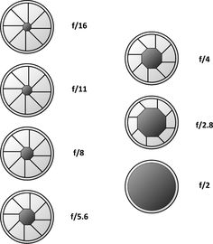 Camera Exposure Basics: Shutter Speeds, Aperture, F Stops, and ISO