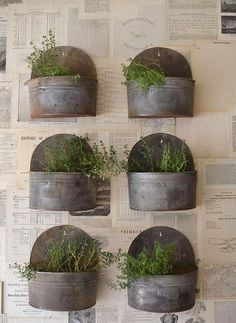 Insanely Cool Herb Garden Container Ideas.