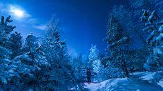Winter magic - null