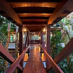 Casa árvore se equilibra em três pontos para preservar a floresta.