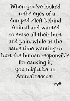 Animal Rescue Sayings - Bing Images Animal Rescue Quotes, Animal Quotes, Pet Quotes, Karma Quotes, Animal Pics, Life Quotes, I Love Dogs, Puppy Love, Animals And Pets