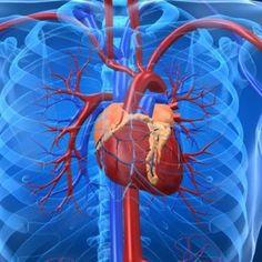 Symptoms of Congestive Heart Failure   Natural Holistic Health Blog