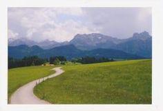 Wiesenweg-mit-imposanter-Bergkulisse