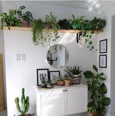 Room With Plants, House Plants Decor, Plant Decor, Plant Wall, Bedroom Plants, Aesthetic Room Decor, Room Inspiration, Home Decor, Jungle Bedroom