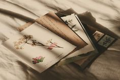 Imagem de aesthetic, beige, and flowers Cream Aesthetic, Brown Aesthetic, All The Bright Places, Under Your Spell, Lily Evans, Aesthetic Pictures, Art Journals, Neutral, Artsy