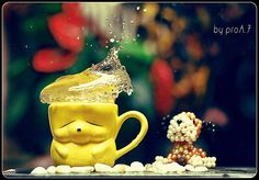 #Cookie Splash v1