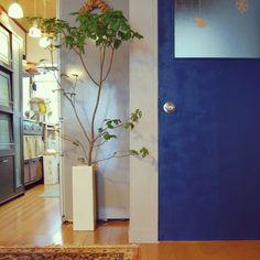 natsuさんの、DIY,植物,北欧,団地,Kitchen,のお部屋写真