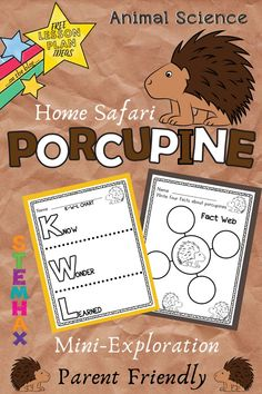 Check Out These Porcupine Lesson Planning Resource for Kids. This Home Safari Animal Science Mini-Exploration Topic is Parent Friendly. Science Websites For Kids, Learning Websites, Animal Worksheets, Worksheets For Kids, Animal Science, Science Fun, Science Experiments, Interactive Sites For Education, Educational Activities For Kids